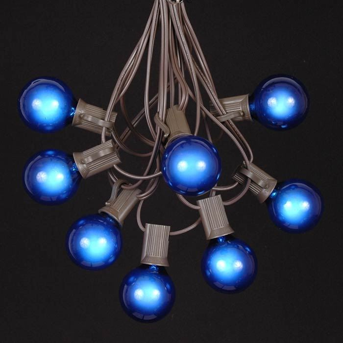 Picture of 25 G40 Globe String Light Set with Blue Bulbs on Brown Wire
