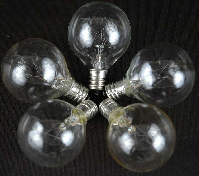 100 Clear G40 Globe/Round Outdoor String Light Set on Brown Wire - Novelty Lights, Inc