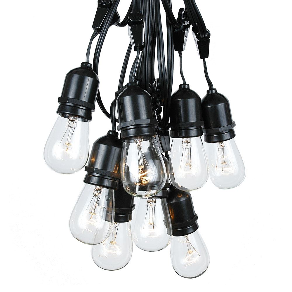Picture of 25 Clear S14 Commercial Grade Suspended Light String Set on 37.5' of Black Wire
