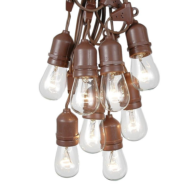 Picture of 25 Clear S14 Commercial Grade Suspended Light String Set on 37.5' of Brown Wire