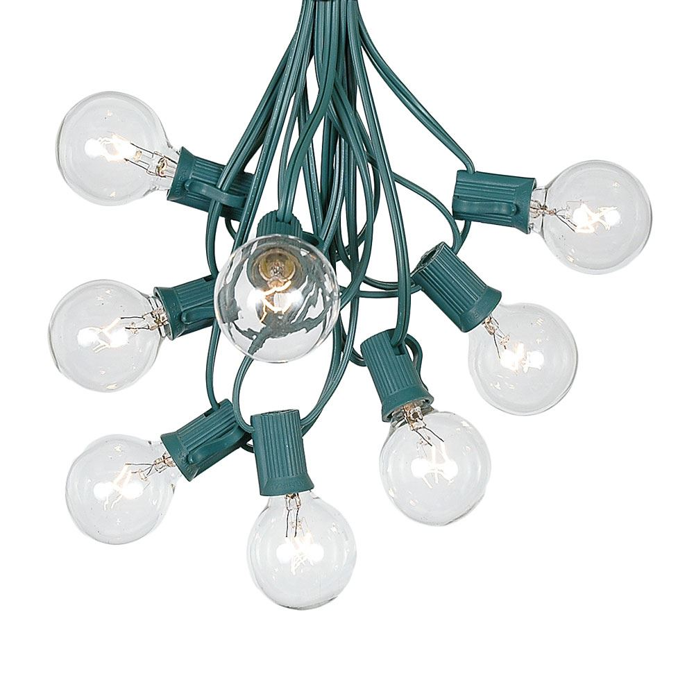 Picture of 100 G40 Globe String Light Set with Clear Bulbs on Green Wire