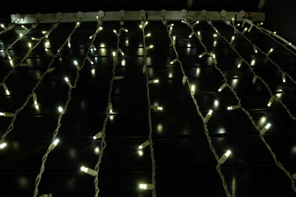 Twinkling led curtain lights on white wire with 20 wide for White twinkle christmas lights