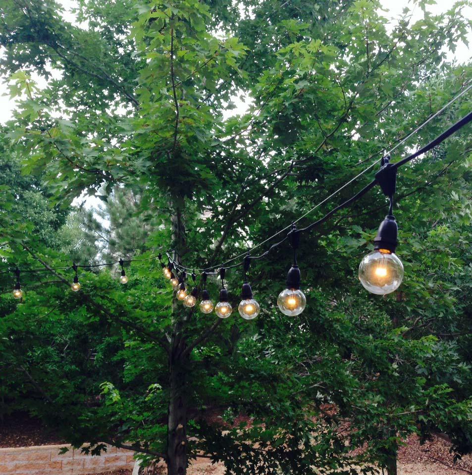 Outdoor String Lights Homebase : 330 Suspended Bulk Heavy Duty Outdoor String Lights With Intermediate Base - Novelty Lights, Inc