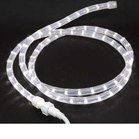 Picture for category 12 Volt Rope Lights