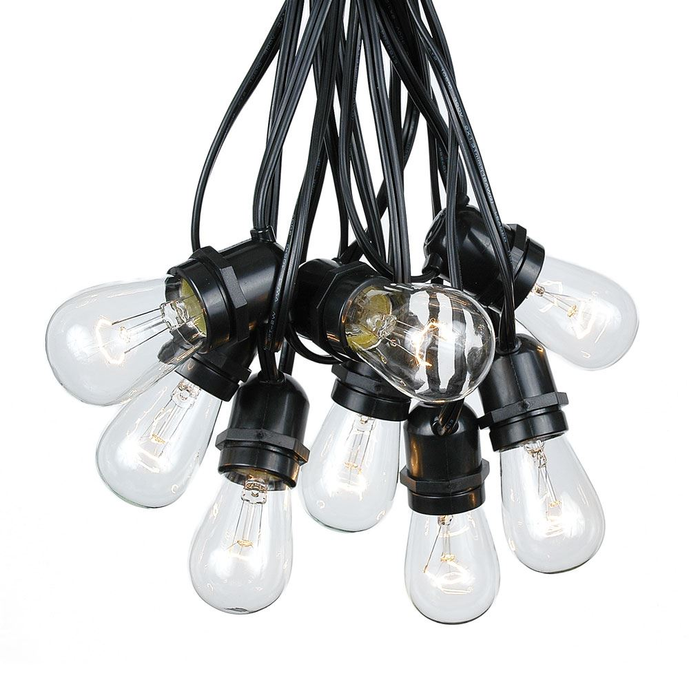 Picture of 50 Clear S14 Commercial Grade Light String Set on 100' of Black Wire