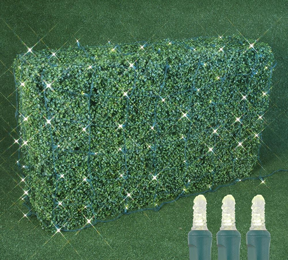 Picture of 100 LED M8 Net Light Set - Warm White - Green Wire - 4' x 6'