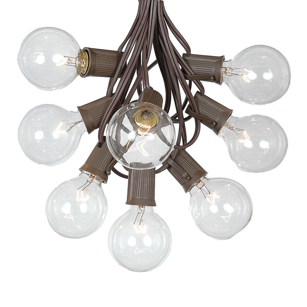 Picture of 25 G50 Globe Light String Set with Clear Bulbs on Brown Wire