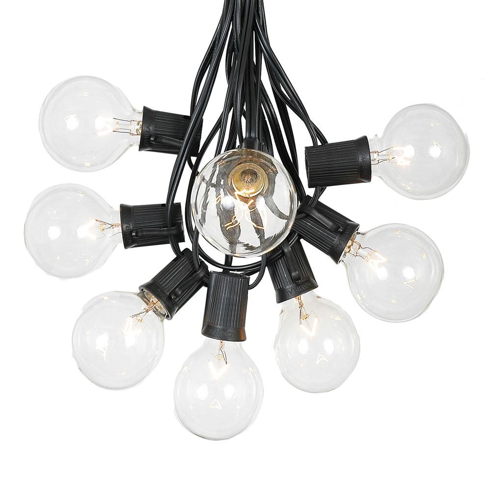 Picture of 25 G50 Globe Light String Set with Clear Bulbs on Black Wire
