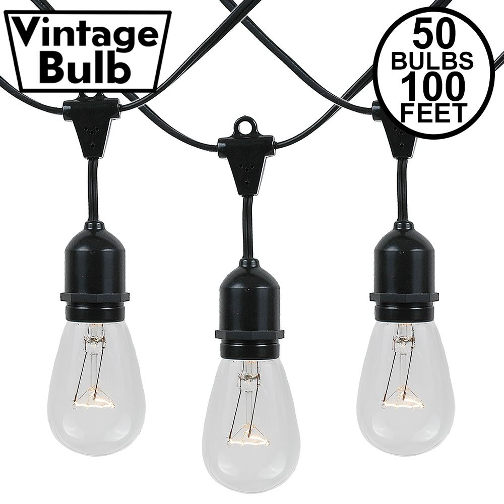 Picture of 50 S14 Clear Commercial Grade Suspended Light String Set on 100' of Black Wire