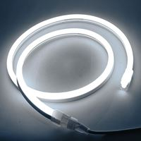 Picture for category LED Neon Flex Rope Lights