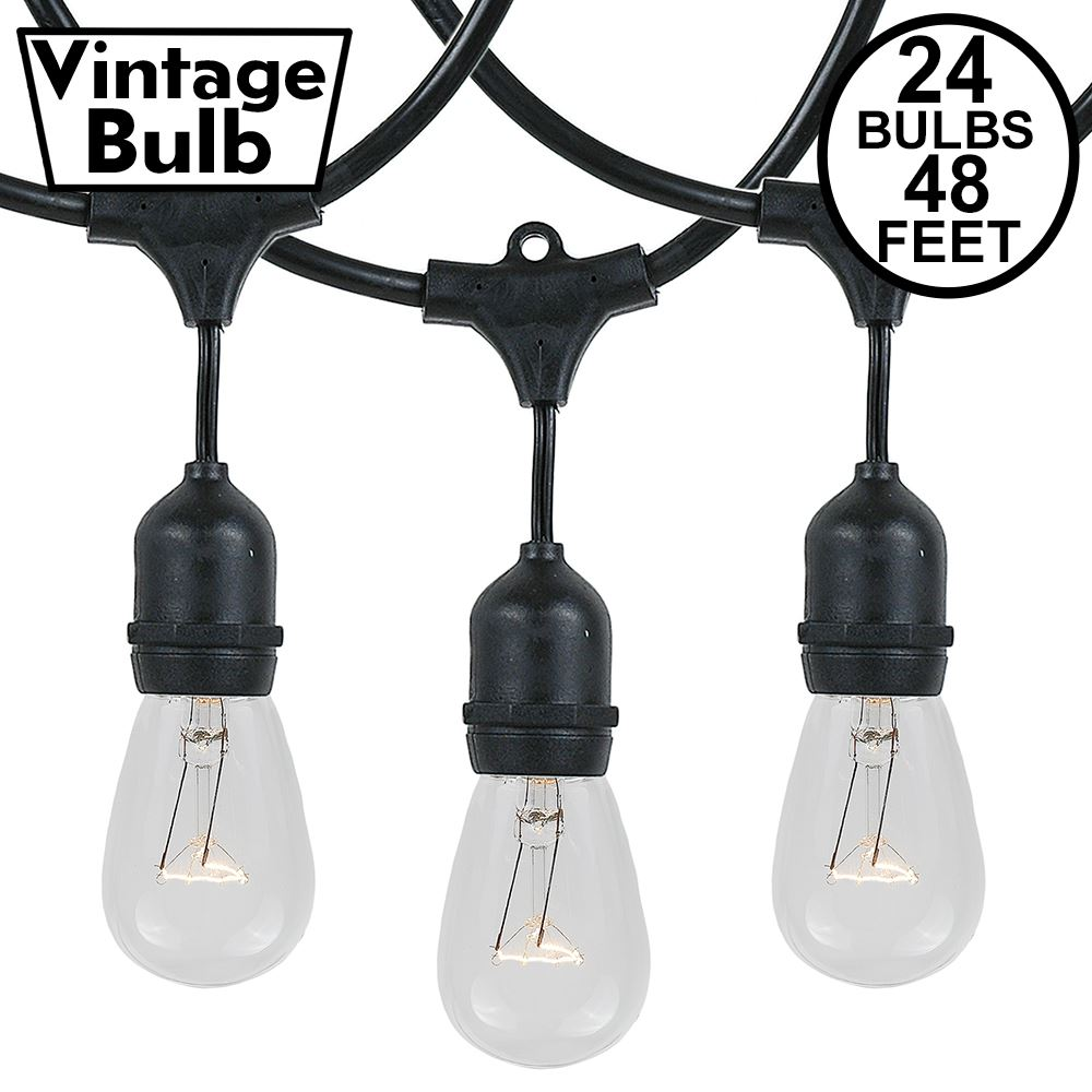 Picture of 24 Clear S14 Commercial Grade Suspended Light String Set on 48' of Black Wire Non-Connectable