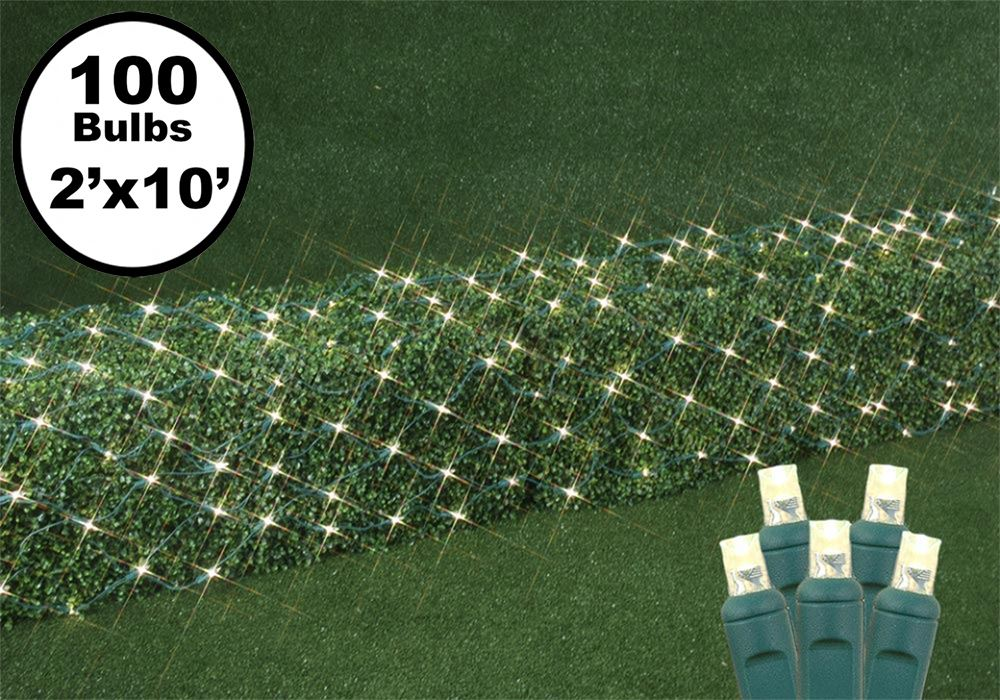 Picture of Warm White LED Net Lights 2x10 Green Wire