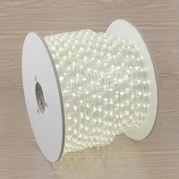 Picture for category LED Rope Lights