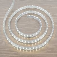 Picture for category LED Strip Lights