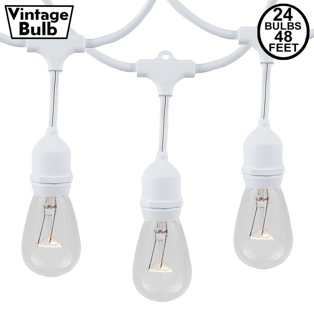 Picture of 24 Clear S14 Commercial Grade Suspended Light String Set on 48' of White Wire